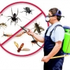 Why Pest Control is required for New Construction