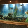 Understand the precautions for the use of acrylic fish tanks